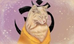 Gato terapeuta