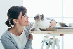 ¿Mi gato es hijo único?