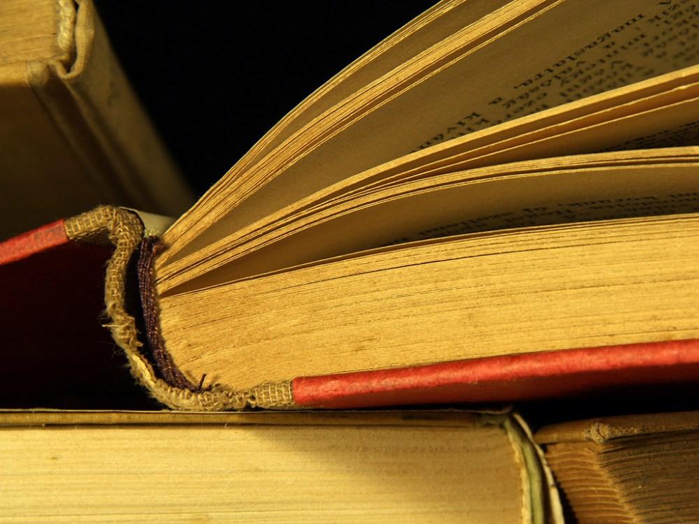 Libri letti (gennaio 2013)