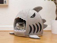 Kattesengen Haikjeft Image