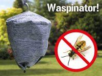 Vepseskremselet Waspinator Image