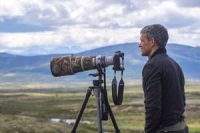 Guidet fotosafari i Dovrefjell Nasjonalpark Image
