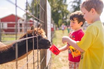 Gaver-Farm-2015-110