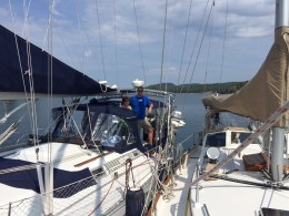 August 14 Gaviidae rafted up with Steelen Time in Indian Harbour