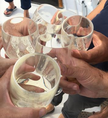 August 8 A toast to Gaviidae!