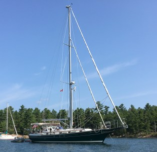 August 27 Gaviidae at anchor in Thomas Bay (near Killarney ON)
