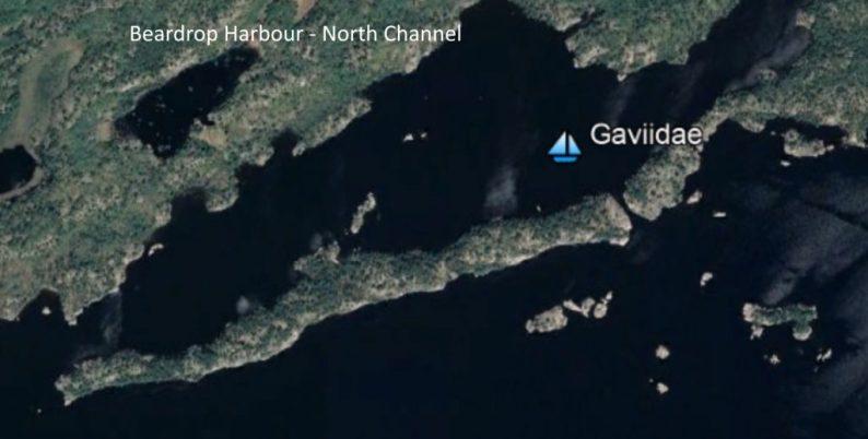 Google Earth view of Beardrop Harbour