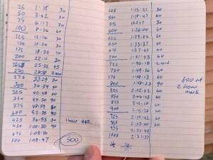 My 1000 Burpee Challenge 2