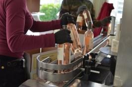 Bottling rosé - 068