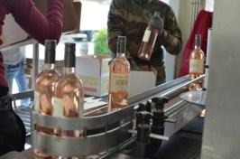 Bottling rosé - 105