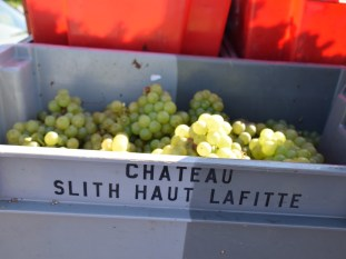 No wonder these crates were cheap. (Smith Haut Lafitte seconds?)