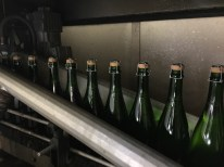 The bottle are then dried properly before labelling
