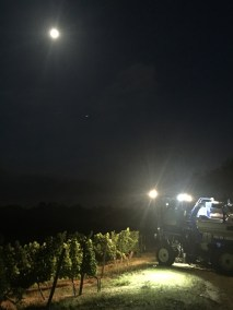 Harvesting under the moon