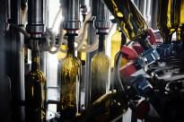 Bottling 2018s by Ed F - 1 of 60 (26)