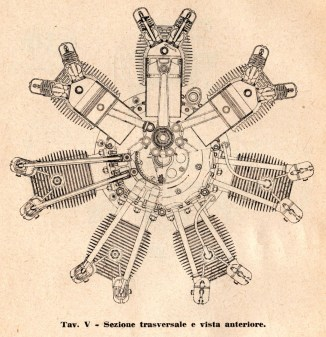 5_Sezione trasversale e vista anteriore