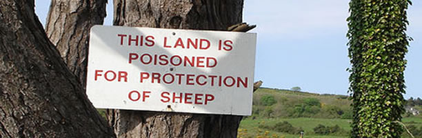 Funny Signs: Poison Protect Sheep Sign, Ireland
