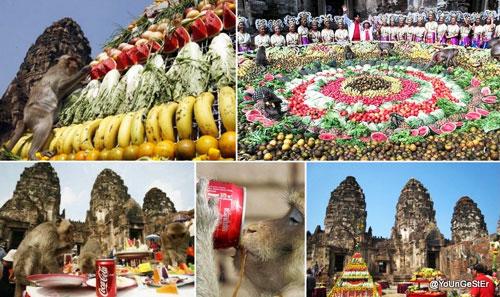 Weird Festivals - Monkey Buffet Thailand
