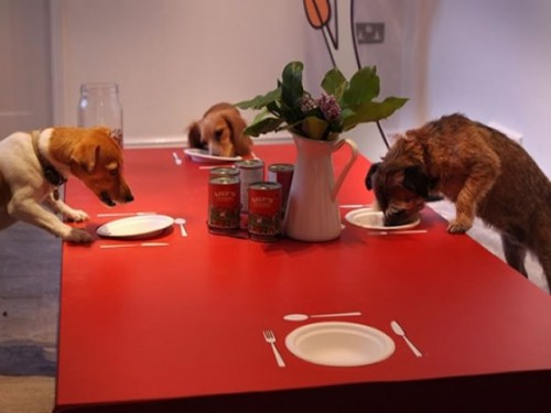 Dogs Enjoying A Meal At Lily's Kitchen | (c) Photo By Peter Macdiarmid, Getty Images
