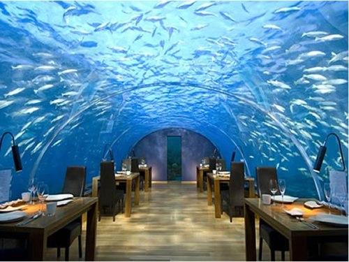 Best Underwater Experiences: The Conrad Rangali Resort Dining