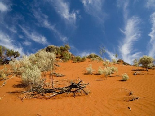 Amazing Survival Stories: View of Australia's Outback