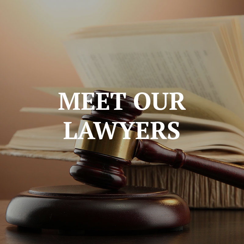 Meet Our Lawyers
