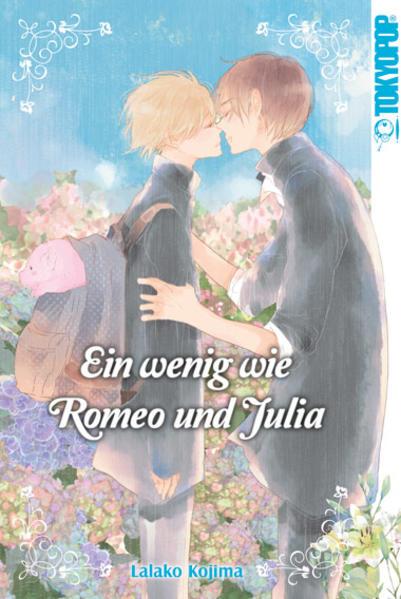 Ein wenig wie Romeo und Julia   Schwule Bücher im Online Buchshop Gay Book Fair