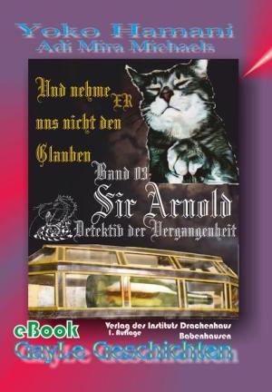 Sir Arnold 03: Und nehme ER uns nicht den Glauben: Detektiv der Vergangenheit. Schwule, erotische AbenteuerGeschichte mit viel Herz.