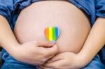 Quais são as técnicas de reprodução assistida para casais homossexuais?