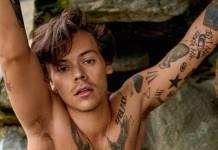 Harry Styles confirma dois shows no Brasil em 2020