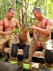 Australian Firefighters Calendar 2020 gifts greeting cards christmas presents birthday mothers day fathers day valentines day xmas 4
