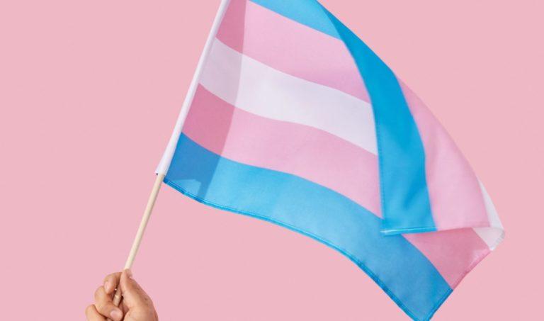 Nesta quarta, Dia Visibilidade Trans, Porto Alegre lança app de prevenção à violência