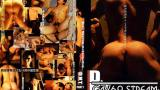 【CDMT002】 D.M.T. FIGHT 2