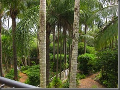 a view from our balcony breakfree noosa (4)