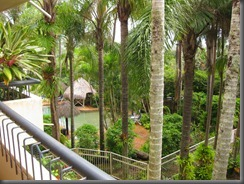 a view from our balcony breakfree noosa (5)