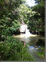 Kondalilla Falls upper pool (1)