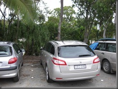 peugeot 508 wagon at noosa surf club