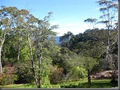 everglades house and garden blue mountains (13)