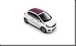 2014 Peugeot 108 (5)
