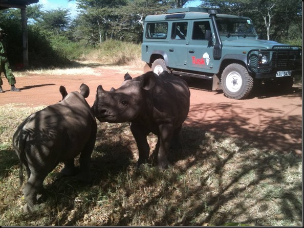 LR with Rhino land rover supports TUSK gaycarboys (2)