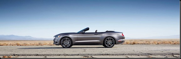 2015 Ford Mustang gaycarboys (2)