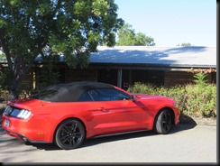 2016 mustang ecoboost convertible hunter valley (1)