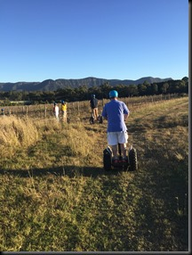 Mustang Hunter Valley segway tour group  (7)