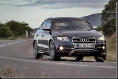 Audi SQ5 TDI  gaycarboys (1)