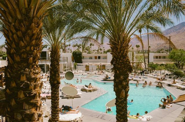Ace Hotel Swim Club Pool