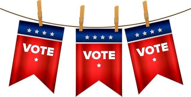 Vote Flags Clothesline