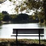bench-lake2