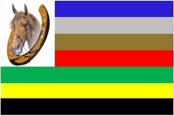 Comunidad Vaqueros13