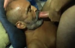 Tiozão barbudo chupando o pau do enteado