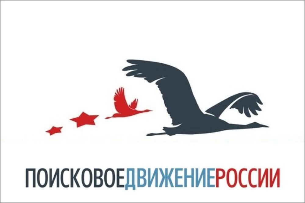 Ростовчанин нашел могилы павших солдат и попросил откликнуться их родственников