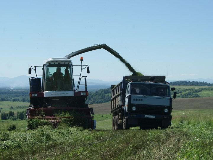 Плюсы и минусы аграрного сезона